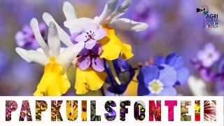 Papkuilsfontein - Agritourism
