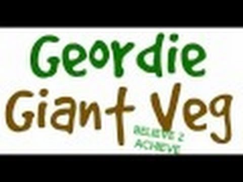 Geordie Giant Veg 🍅🌱🍆🍄🌽🌾🌿 competition 🐥🐦