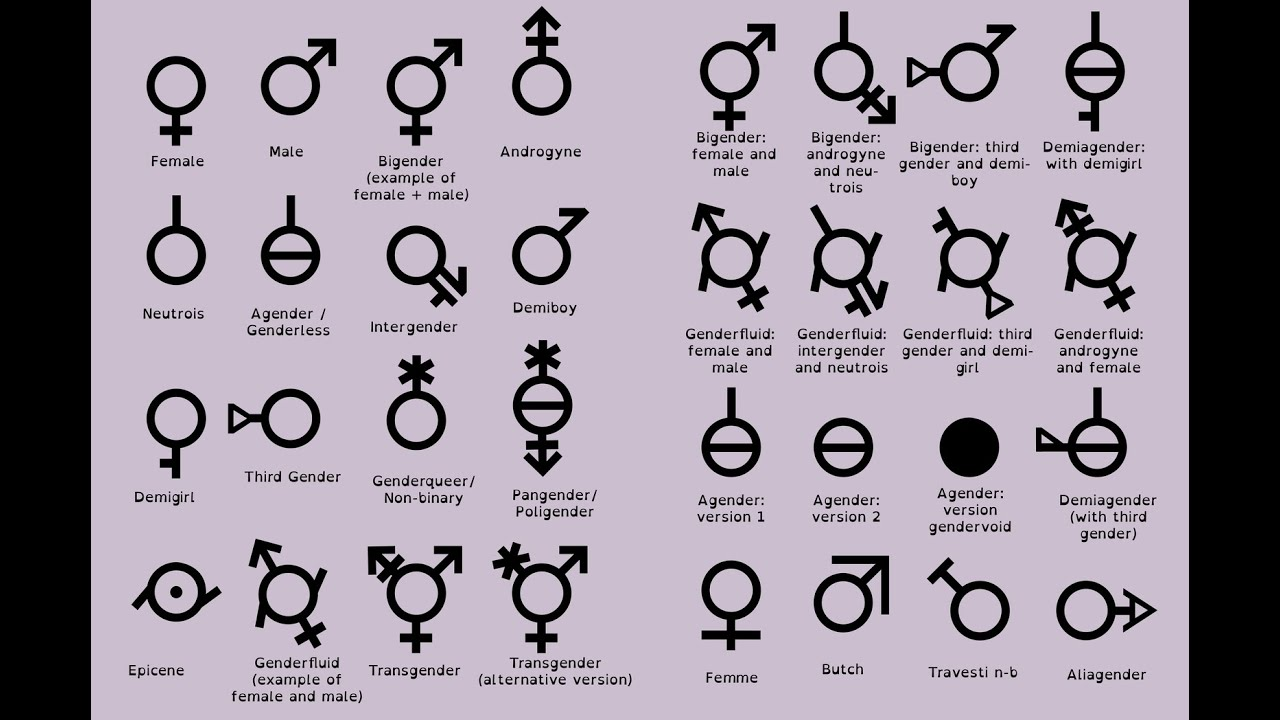 Tumblr list of genders and sexualities