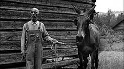 hqdefault - Canadian Labour Camps Depression