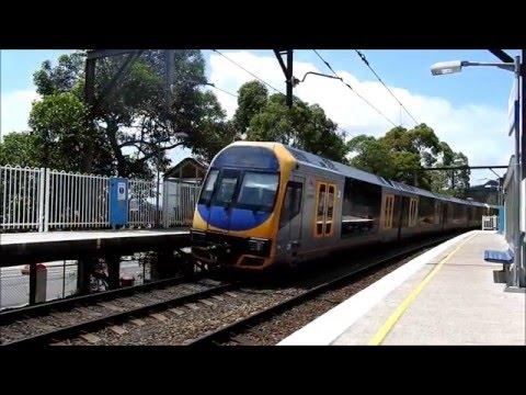 Trains at Koolewong - Train Vlog #5