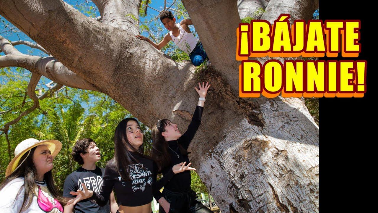 Download E11 RONNIE SE SUBE A UN ARBOL PARA SALVARSE DE NATALIA Y LEGNA   TV Ana Emilia