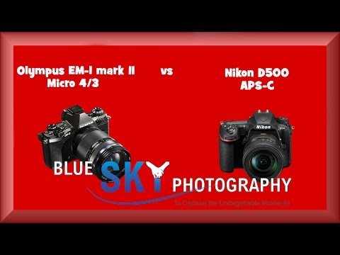 Nikon D500 vs Olympus OM-D EM-1 mark II !!!  Let`s discuss the advantages of both systems !!!