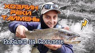 Хозяин реки таймень Трудовая рыбалка на закоряженной реке