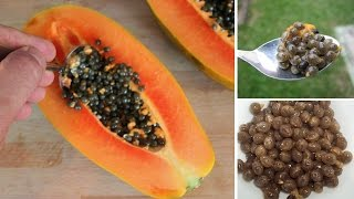 here is why you should not throw away papaya seeds
