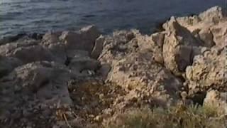 Kroatien - Grenzen des Daseins