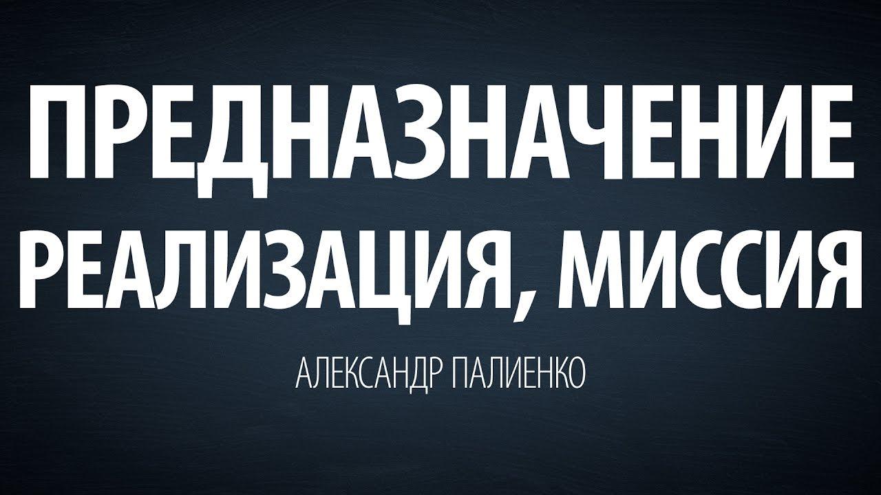 Александр Палиенко - Предназначение, реализация, миссия.