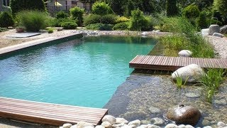 Natural Pond and Swimming Pool Design Ideas