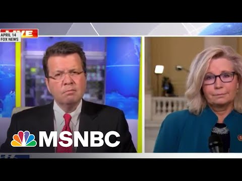 A Study In contrasts: Sen. Lindsey Graham and Rep. Liz Cheney | Morning Joe | MSNBC