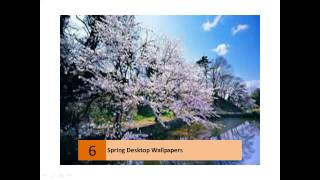 Amazing Free Hd Spring Wallpapers Collection