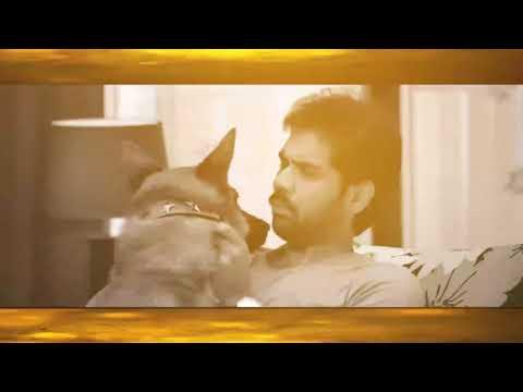 Pariyerum Perumal | Karuppi Music Video Feat. Santhosh Narayanan | Kathir, Anandhi | Mari Selvaraj