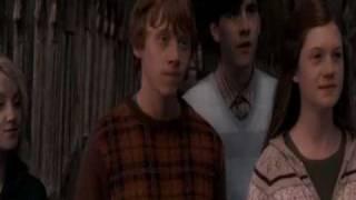 Саша Белый и Орден Феникса (Гарри Поттер)