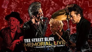 THE STREET BEATS 『MEMORIAL LIVE ~THANKS! DEBUT 30 YEARS~』 デビ...