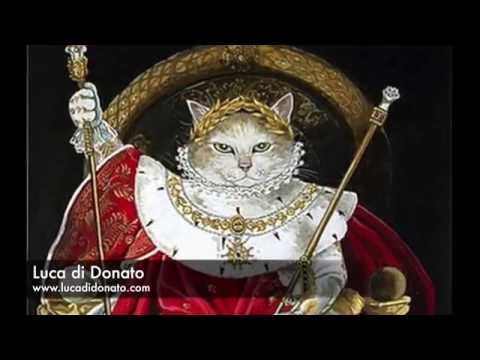 Sa Majestè le Chat