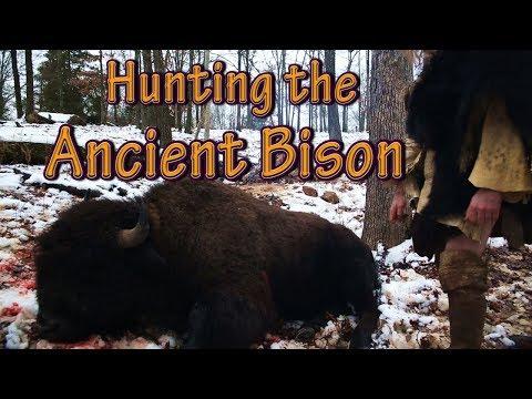 (Short Version) Primitive Hunting Bison (BUFFALO) With The ATLATL. Hunting Scene