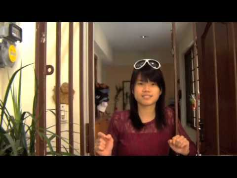 The downside to Integrated Resorts (IRs) in Singapore - Subtitled Version