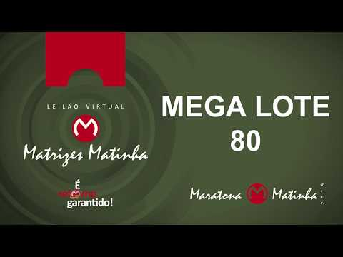 MEGA LOTE 80 Matrizes Matinha 2019