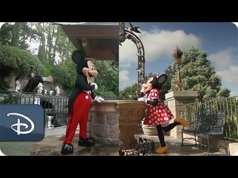 Disneyland Resort & Walt Disney World | A Tale of Two Disney Parks