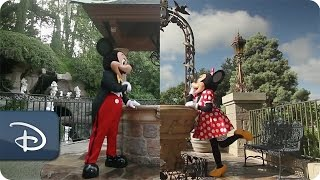Disneyland Resort & Walt Disney World | A Tale of Two Disney Parks