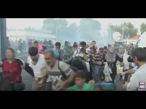 Migrants, police clash at Hungary-Serbia border