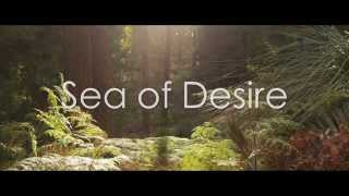 Sea of Desire Trailer - Alex Ford Feat Miles Bonny, Coin Banks & Marksman Lloyd Produced by Esta
