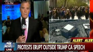 Fox News Reports Cruz Protester: You're From Canada And Not Eligible To Be President