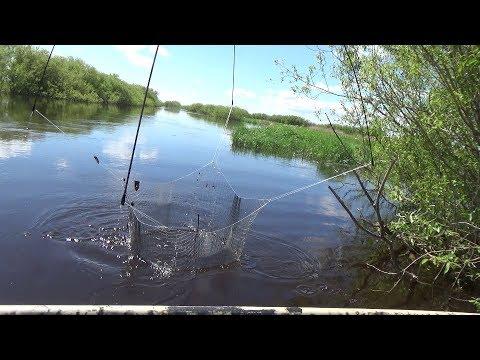 Рыбалка на паук.