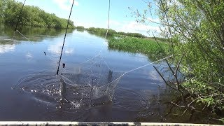 Spider fishing. Fishing on lift. Swamps, rivers and lakes in search of fish.