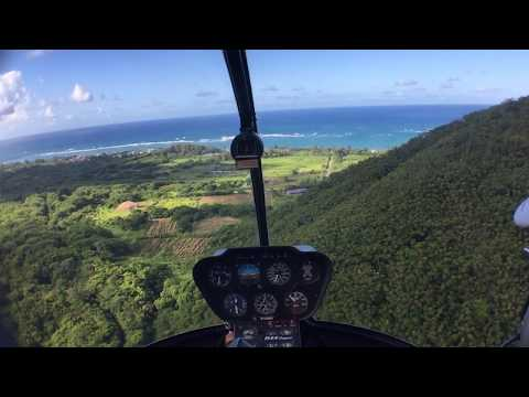 Flying Helicopter around Oahu Hawaii, Hammerhead sharks and more