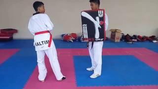 Video Tutorial Tendangan Taekwondo download MP3, 3GP, MP4, WEBM, AVI, FLV Maret 2018