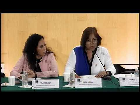 🔴 EN VIVO / Audiencias públicas sobre leyes secundarias de Reforma Educativa
