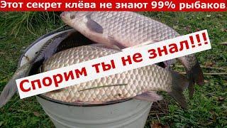 НОВИНКА Секретный убийца карася Лучшая рыболовная насадка Активатор клева Арома для рыбалки