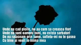 Poem The Motans feat Irina Rimes Lyrics Versuri
