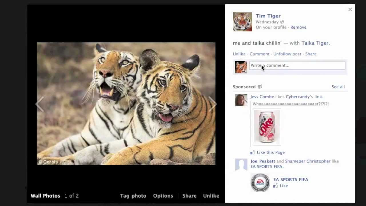 what do tigers need to survive