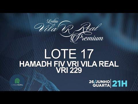 LOTE 17 (VRI 229)