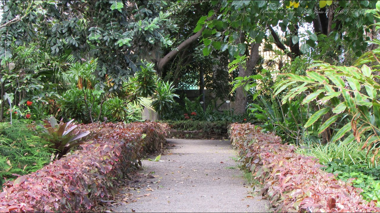 Jardin bot nico puerto de la cruz youtube for Jardin botanico de tenerife