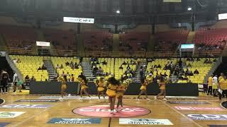 Capitanas Dancers 2019 / Pitbull