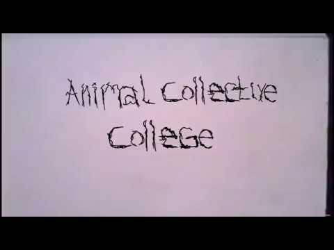 Animal Collective - College (Lyric Video)