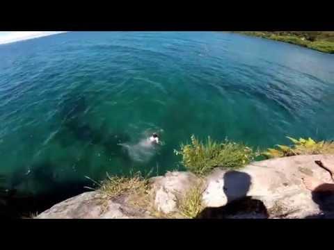 Bulli Point Lake Taupo Cliff Jumping