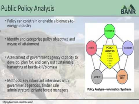 BANR Socioeconomic and Policy Analysis Research Webinar (Sarah Strauss)
