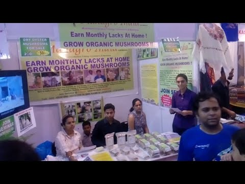Fresh Oyster Mushroom Marketing Presented by MahaGro India Mumbai,India. www.mahagroindia.in