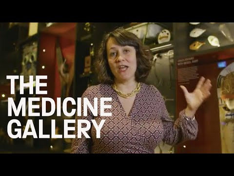 Medicine: The Wellcome Galleries At The Science Museum