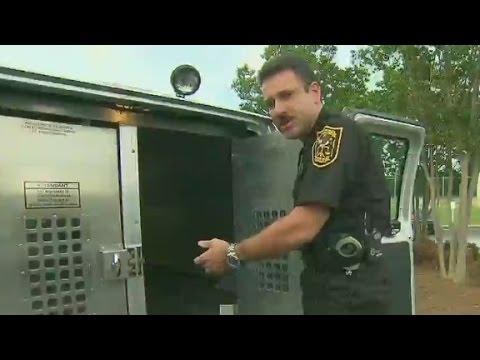 What It's Like Being Held Inside A Police Van