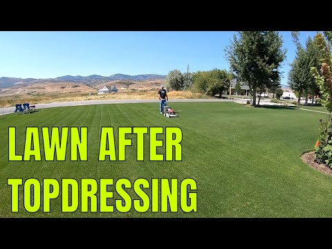TOP DRESSING UPDATE 1 Week Later // Connor Ward