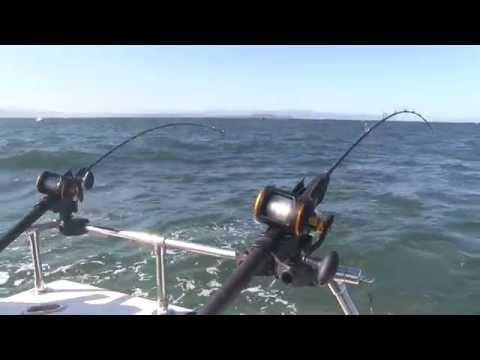 Puget sound pink salmon fishing basics doovi for Eureka ca fishing