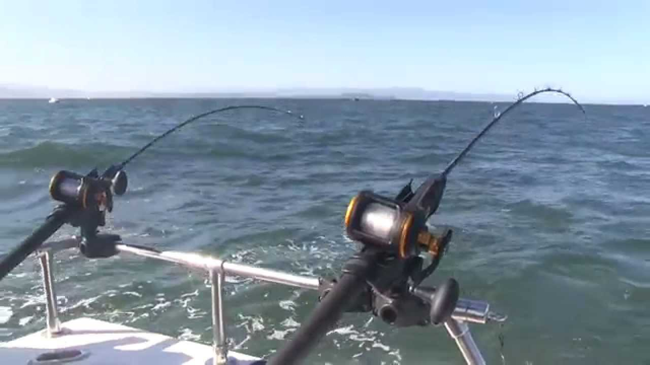 Salmon fishing out of eureka california youtube for Salmon fishing in california