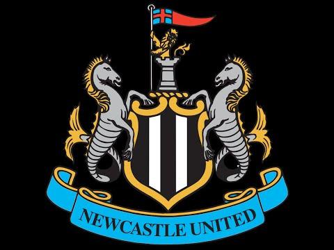 Newcastle Top 10 Goals Of The Season 2015/2016