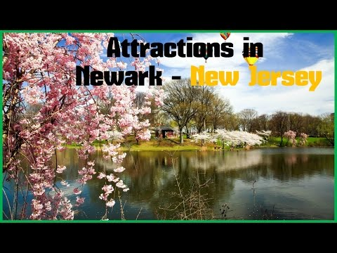 Top 12. Best Tourist Attractions in Newark - Travel New Jersey