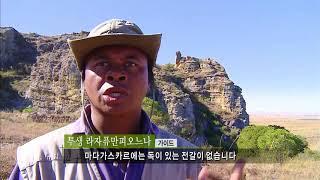 [EBS 세계테마기행] 아프리카의 소행성 마다가스카르 1~4부