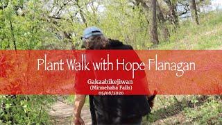 Plant Walk with Hope Flanagan